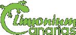 limonium-logotipo.png